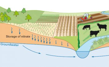 Groundwater nitrates threaten water supplies worldwide
