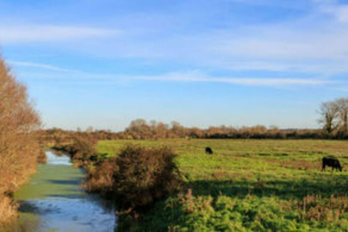New farming rules for water quality